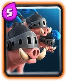 porcos reais