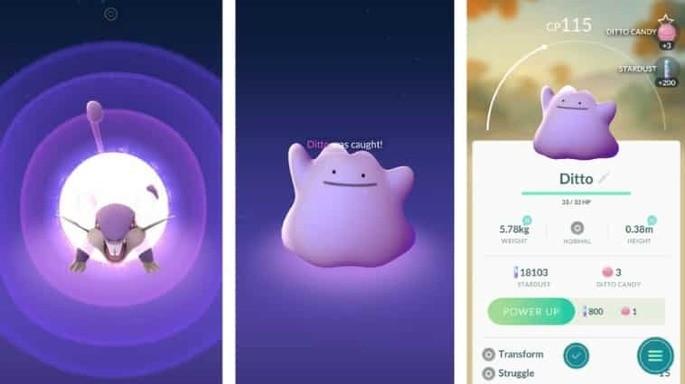 Ditto - Pokémon GO