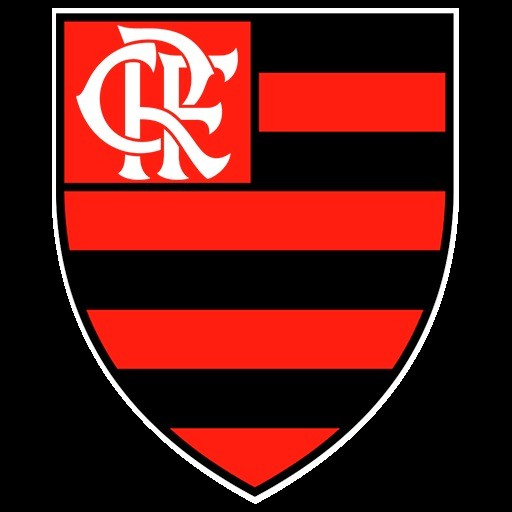 Logo flamengo dsl