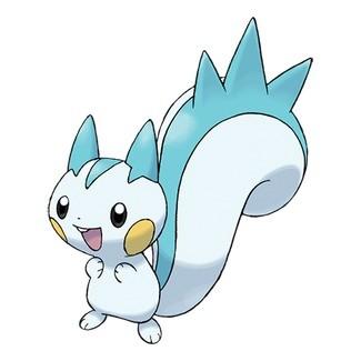 Pachirisu - Pokémon GO