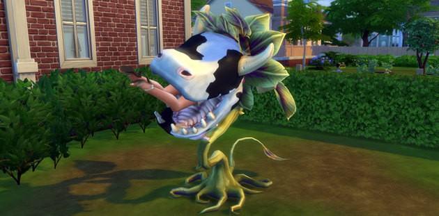 Planta Vaca - Comida
