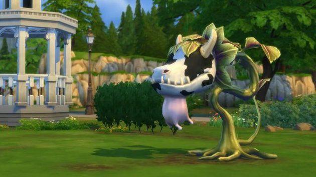 Planta Vaca