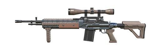 M21 carapina DMR